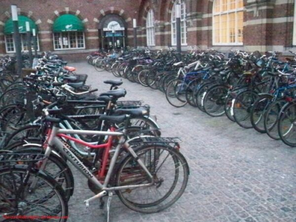 Bicycle Parking looks messy and unsafe.