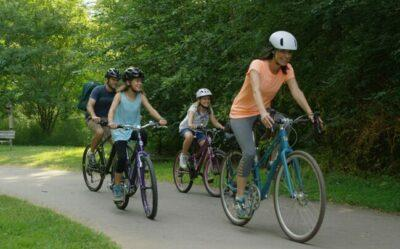 Biking Picnic as feature image for best buy electric bikes below 1000