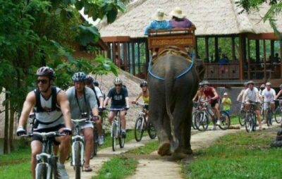 Elephant trekking and village cycling in Bali as the featured image for Brand-X Road Bike post.
